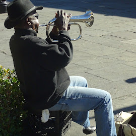 Jazz Flugel Horn by David Walters - People Musicians & Entertainers ( new orleans, muician, people, sony hx400v, flugal horn )