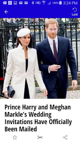 Duchess Diaries Screenshot