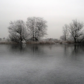 minus 15 at Christmas  by K J - Landscapes Weather ( pwcwinter )