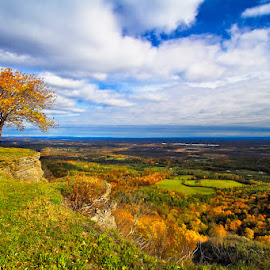 Heldeberg Fall by Neil Shapiro - Landscapes Travel ( mountain, albany, capital district, thacher park, leaf, leaves, [new york state], heldeberg escarpment, helderbergs, sky, tree, autumn, heldebergs, foliage, state park, [natural things], [places - specific places], [heldebergs], [concepts], clouds, park, thatcher park, ny state park, fall, scenic view, [parks and natural areas], copyright neil r. shapiro,  )