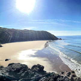 R&R by Catherine Roberts - Novices Only Landscapes ( gower )