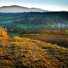 Into the morning light by Tamas Valentin - Landscapes Mountains & Hills ( hills, nature, morning, landscape, fields )