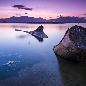 Evening Wood by Geb Bunado - Landscapes Waterscapes ( driftwood, subic bay, sunset, seascape, landscape, philippines, log )