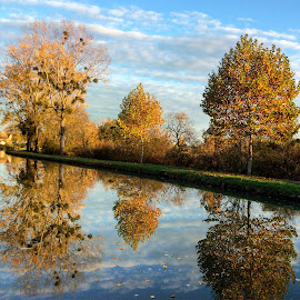 Autumn in the Canal du Centre, Burgundy, France by Sue Boxell - Nature Up Close Trees & Bushes ( clouds, water, sky, autumn leaves, waterscape, reflections, trees, france, canal )