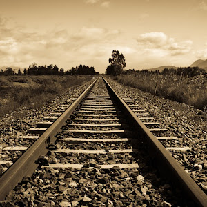 On The Rails.jpg