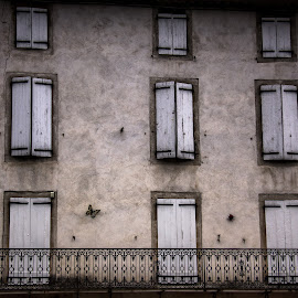 by John Herlo - Buildings & Architecture Architectural Detail