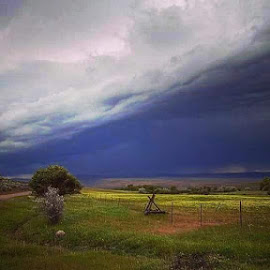 Thunderstorm  by D.j. Nichols - Instagram & Mobile Android ( thunderstorm )