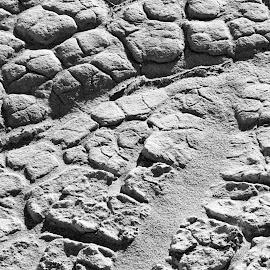 Salt Patterns by Randi Hodson - Abstract Patterns ( dry, desert, pattern, salt )