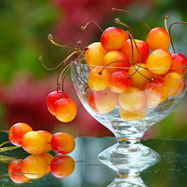 Cherrytime#4 by Asif Bora - Food & Drink Fruits & Vegetables (  )