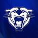 Conway Wampus Cats Athletics Icon