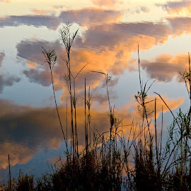 Clouds Reflected on Water by Michael Villecco - Nature Up Close Water