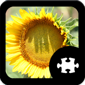 Game Flower Jigsaw Puzzle apk for kindle fire
