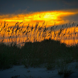 by Jim Antonicello - Landscapes Beaches