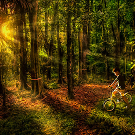 Little Boy Bike Riding Into the Woods by Gilbert Sanchez - Landscapes Forests ( forests, greens, sunrises, sun set, wood, green leaves, green leaf, forest, sunlight, woods, sun, sunburst, sunny, sunset, sunsets, sunrays, forest floor, sundown, woodland, sunshine, sunrise, relax, tranquil, relaxing, tranquility )