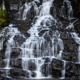 The Elephant Falls by Atin Saha - Nature Up Close Other Natural Objects ( waterfalls, nature, sigma, falls, meghalaya, tourism, travel, nikon )