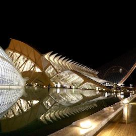 Valencia by Lu  Yo - City,  Street & Park  Night
