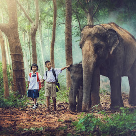 Childrens walking to school along with the elephant. by Pitakchatr Thepracha - Digital Art People ( to, home, face, walking, wood, holding, joy, elephant, thailand, thai, people, skin, kid, asian, playing, child, hand, friends, girl, student, hands, family, safari, care, asia, friendship, baby, africa, head, animals, uniform, bag, back, mammoth, forest, kids, in, studying, school, pattern, mother, background, trees, group, natural, boy, outside, culture )