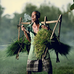 take grass by Abe Less - News & Events World Events