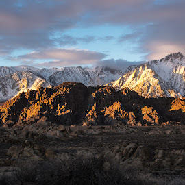 Early Light by Richard Michael Lingo - Landscapes Mountains & Hills ( alabama hills, hills, mountains, sierra nevada, california, landscape )