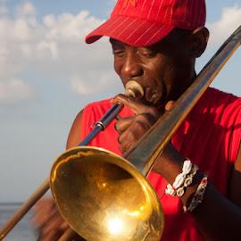 musician by Carole de Beer - City,  Street & Park  Neighborhoods ( malecon, musician, havana )