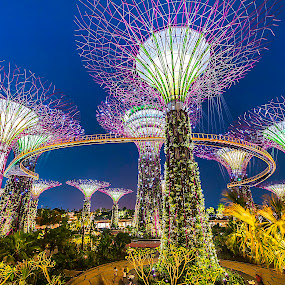 Garden By the Bay by Welly Agus - City,  Street & Park  City Parks
