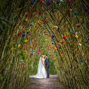 by Adrian O'Neill - Wedding Bride & Groom (  )