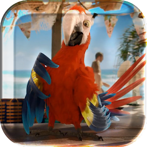 Macaw Parrot Live Wallpaper