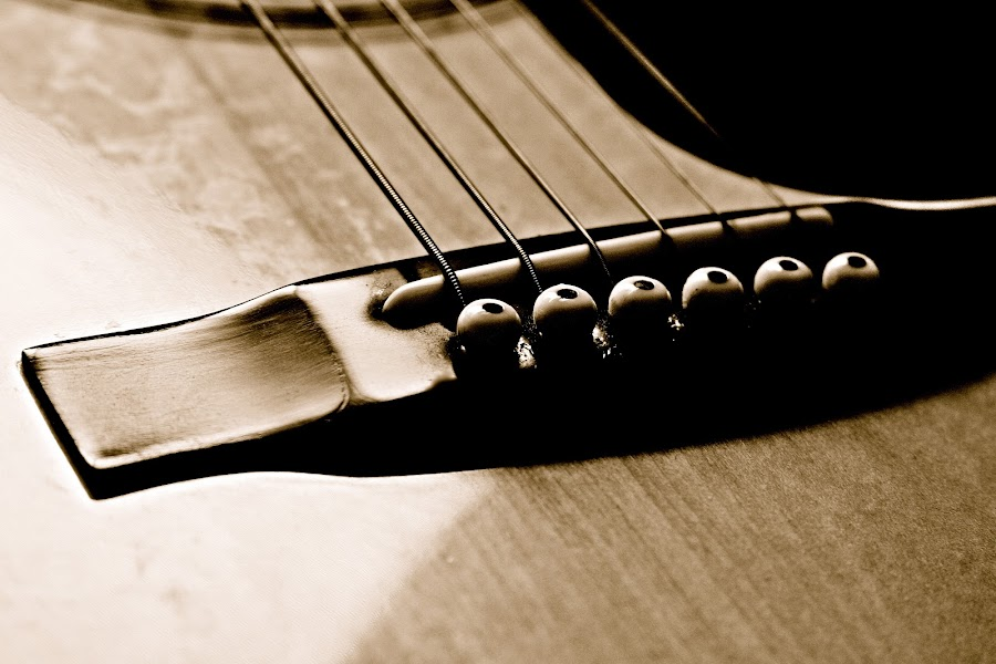 by Shane Egan - Artistic Objects Other Objects ( music, fine art things, guitar, strings, bridge, instrument )