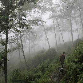 by Kunal Bhattacharya - Nature Up Close Trees & Bushes