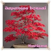 Download Japanese bonsai small wonders APK to PC