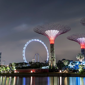 The Supertrees, the Flyer and the lights by Toh Wee Siang - City,  Street & Park  Skylines ( singapore flyer, night, gardens by the bay )