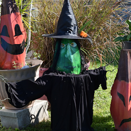 Yard decorations by Priscilla Renda McDaniel - Public Holidays Halloween ( yard, witch, pumpkins, decorations, homemade, halloween,  )