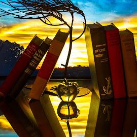 The Teacher's Desk by Lisa Hendrix - Artistic Objects Other Objects ( books, blueskies, reflection, tree, still life, apple, sunset, artistic, sunlight, light, sun, old books )