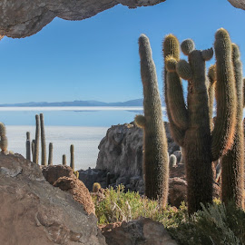 Salar de Uyuni by Sergio Tohtli - Landscapes Caves & Formations