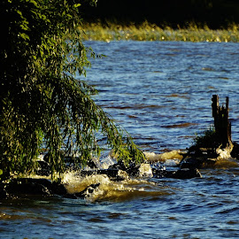 Parana river - Itapura SP Brazil by Marcello Toldi - Landscapes Waterscapes