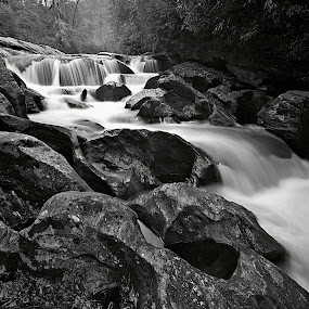 cascades at bull pen by Steven Faucette - Black & White Landscapes ( black and white, cascades, north carolina,  )