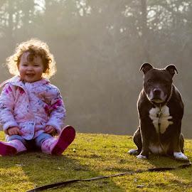 Nanny dog by Jenny Trigg - Animals - Dogs Portraits ( child, sunset, dogs and kids, sunshine, staffordshire bull terrier, nanny dog, portrait )
