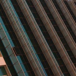 Lines by Beh Heng Long - Buildings & Architecture Architectural Detail ( building, dubai )
