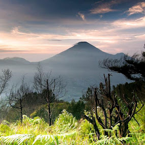 View From Peak of Mt. Sikunir Dieng by Sigit Irmawan - Landscapes Mountains & Hills (  )
