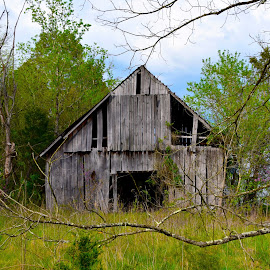 Barn by Bill Telkamp - Buildings & Architecture Decaying & Abandoned ( old, building, barn, structures, abandoned,  )