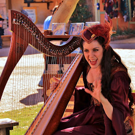 Gaelic Harp by Jim Johnston - People Musicians & Entertainers