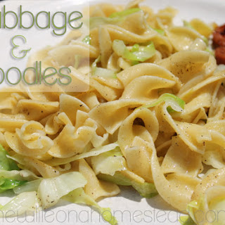 Cabbage and Noodles. A Delicious and Cheap Meal.