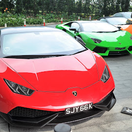 Sport Cars by Koh Chip Whye - Transportation Automobiles