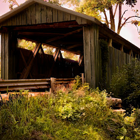 A Bridge To The Past by Irma Mason - Buildings & Architecture Bridges & Suspended Structures ( structure, nature, vintage, covered bridge, bridge, pwcbridges, country )