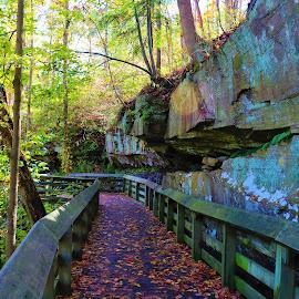 Rock Side Boardwalk by Paul S. DeGarmo - Uncategorized All Uncategorized ( park, side, rock, view, boardwalk )
