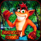 Bandicoot Runner