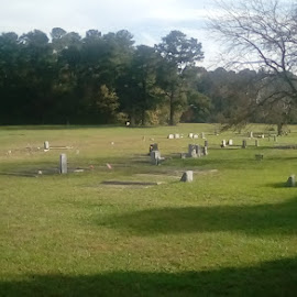 by Christopher Harris - City,  Street & Park  Cemeteries ( graves, gravestone, historic, war, graveyard )