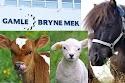 Utstilling av dyr, konkurranser, gratis ansiktsmaling mm