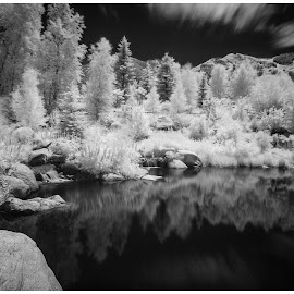 Infrared Photo at the John Denver Park in Aspen, Colorado by George Kremer - Digital Art Things ( mountains, infrared, colorado, rocky mountiains, trees, streams, long exposure, aspen )