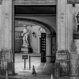 entrance by Paulo Rodrigues - Buildings & Architecture Statues & Monuments ( photo/foto, konika57mm, sonya6000, portugal, lisboa, entrance )
